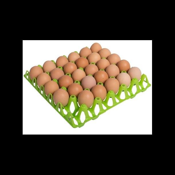 Æggebakker til 30 æg - Grøn plast