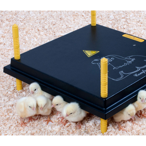Kyllingemor 25x25 cm